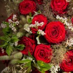 Bouquet de roses rouge - Chloris