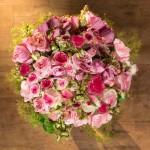 Les roses roses d'Eos