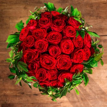The Aphrodite red roses