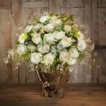 Les roses blanches d'Héméra