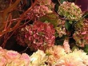 Bouquet de fleurs - hortensia d'automne