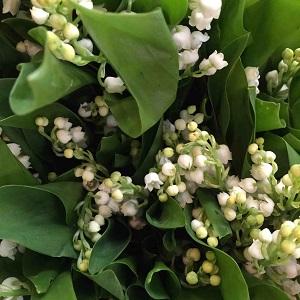 Bouquet de fleurs - muguet