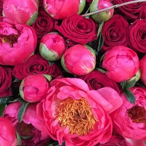 Bouquet de fleurs - pivoine
