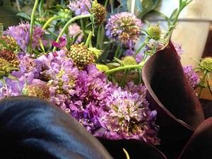 Bouquet de fleurs - scabieuse